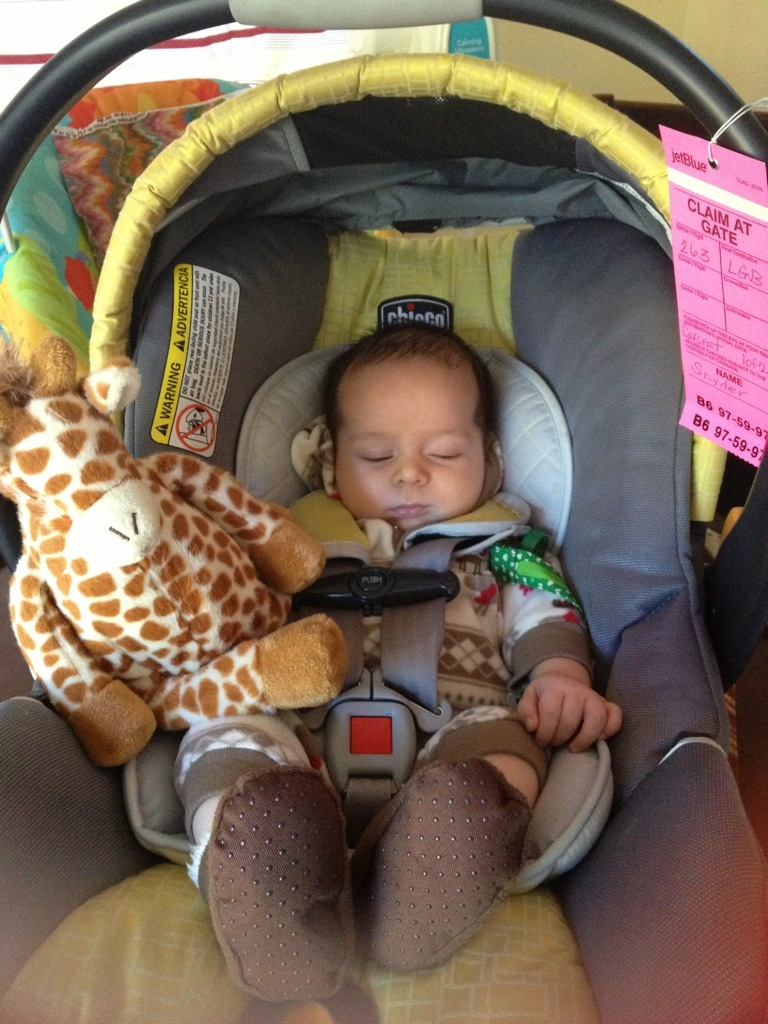 "The ""Gentle Giraffe"" attached to Luca's carseat helped drown out the noisy airport so that he could continue his nap."