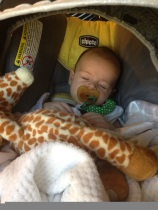 Luca Sleeping in His Carseat with His Beloved Gentle Giraffe